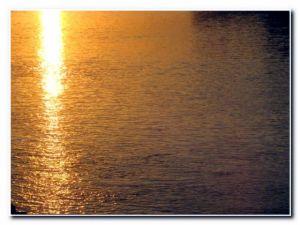 More hoće da ga sunčeva žeđa ljubi i usisava; hoće postati zrakom i visinom i stazom svjetlosti i samom svjetlosti!